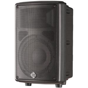 IX8 двухполосная акустическая система